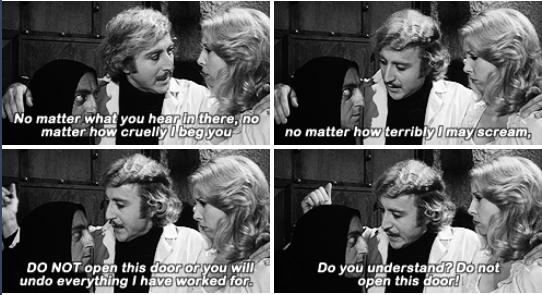 1 Young Frankenstein quotes